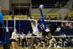 Belles dominate the Greyhounds and Lady Buffs