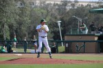 Baseball's series opener against North Carolina postponed