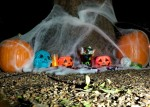 Halloween: How to, Where to, What to do