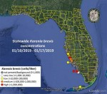 Red tide returns to Sarasota