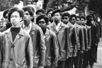 Review: 'The Black Panthers: Vanguard of the Revolution'