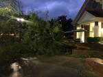 FAMU Students Prepare for Hurricane Michael