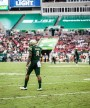 USF falls to Houston 28-24, 12-game win streak snapped