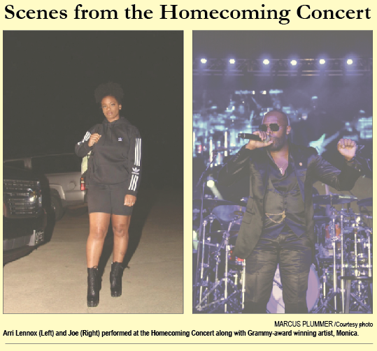 Scenes from the Homecoming Concert