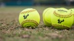 USF softball excited for exhibition against international powerhouse