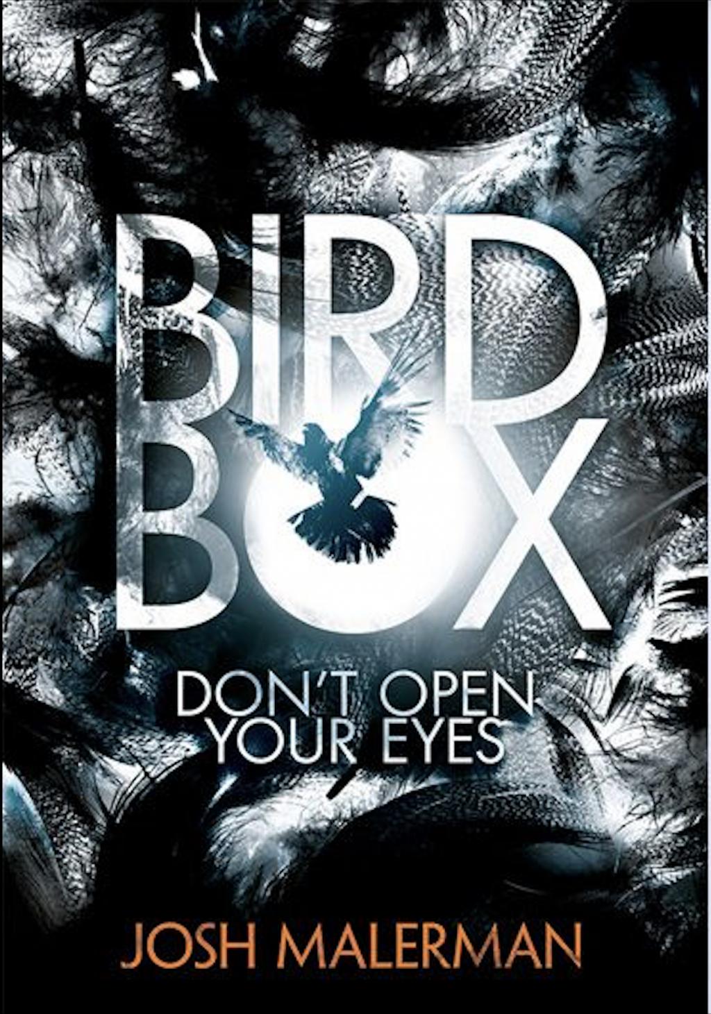 Netflix hits home run with 'Bird Box'
