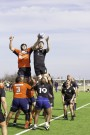 Ram Rugby falls to Roadrunners