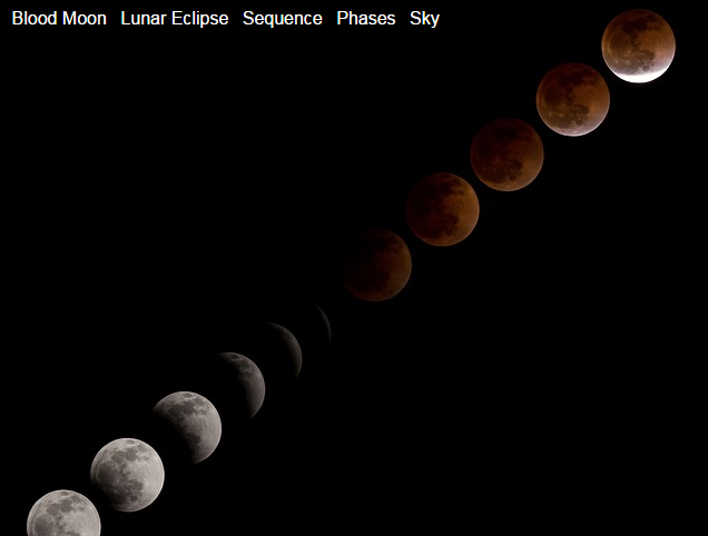 Outdoor Enjoyment: Blood Moon in Ault Park