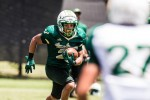 USF secondary takes shape during spring practice