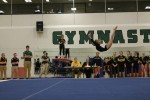 Women's gymnastics defuse Ithaca Bombers
