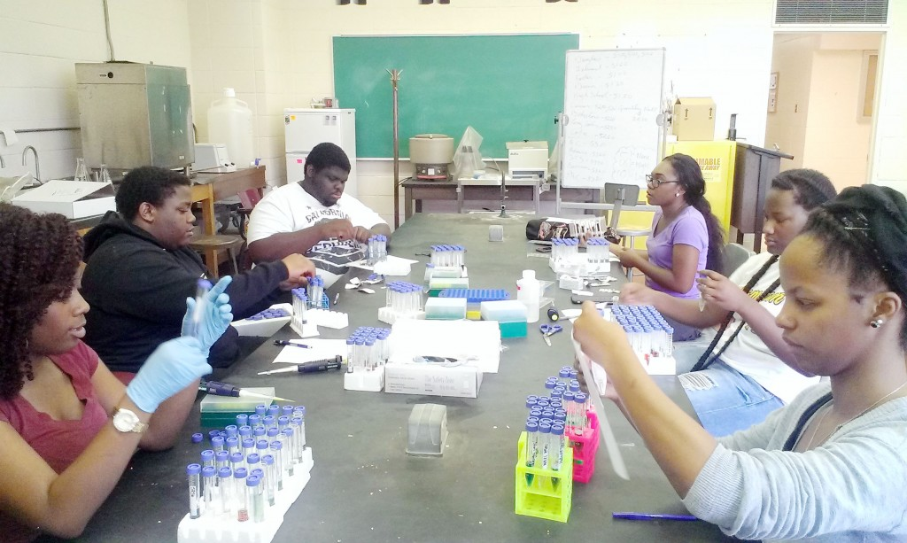 AKANE SIMPSON/The Gramblinite CMAST students practicing their measuring and sampling techniques in the biology lab.