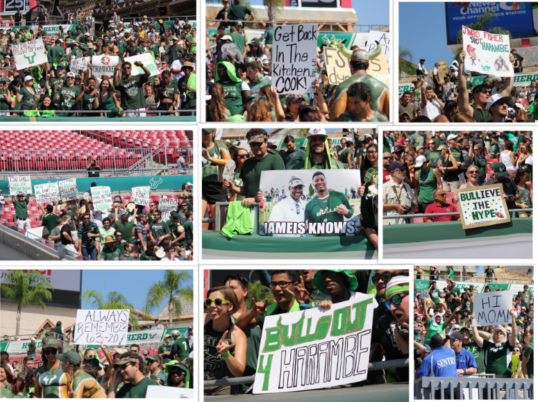 Photos: Best signs from USF vs. FSU
