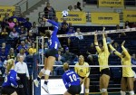 Belles remain untouched on home court for the season
