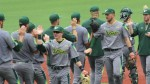 USF to begin AAC Tournament on Wednesday