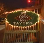 The Pub vs. The Dog
