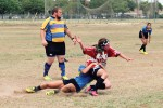 Belles get tough for rugby season