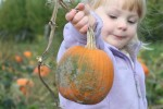 Ramapo hosts a variety of events to celebrate fall