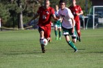 Men's Soccer Drops Two Over Weekend