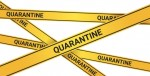 Ten things to keep you busy while quarantined