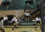 USF volleyball receives postseason invitation