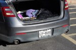 Student Minds: What's in your trunk