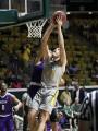 Lions basketball setting the bar higher