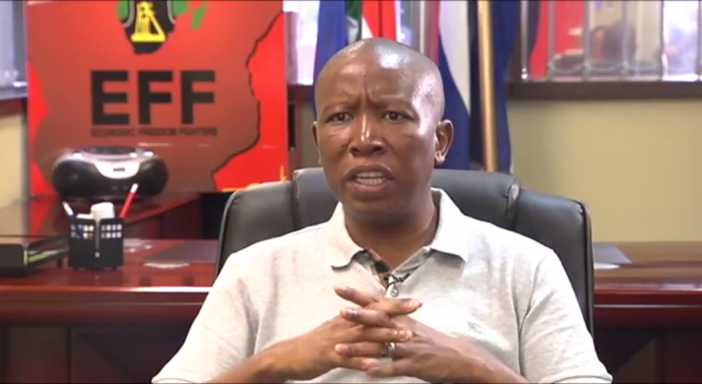 Julius Malema's vision for South Africa is a bad one