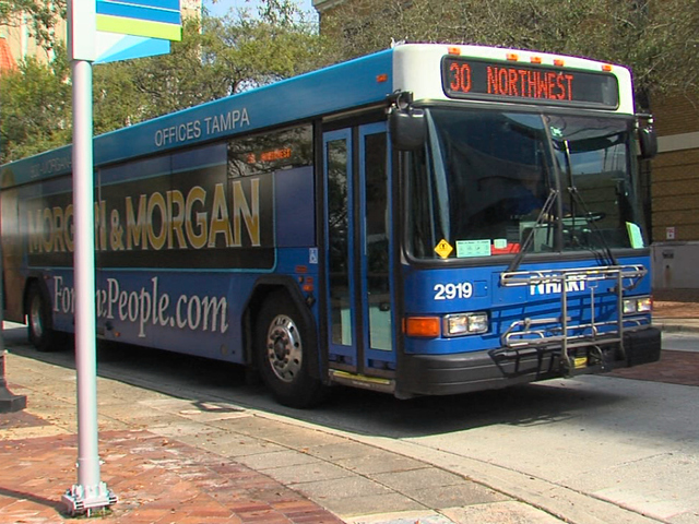tampa continues to tackle public transportation issue the oracle