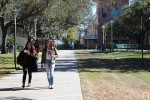 USF students reflect on fall semester