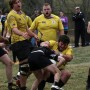 Rugby wins first Dixie conference title, playoffs to begin March 19