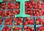 County to hold lottery for farmers' market coupons for low-income seniors