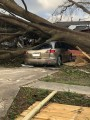 FAMU students from Panama City talk about storm's devastation