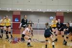 Women's Volleyball Beats Rowan, Set to Face Stockton