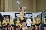 Volleyball splits opening weekend