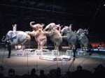 EDITORIAL: No nostalgia spared for end of  Ringling Bros. circus