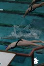 Swimming Dives into Success; Wrestling Trips Up