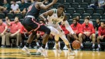 Collins and Yetna lead way in Bulls' victory against Florida A&M
